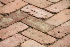 Free Red Brick Path Stock Photo - 21029280