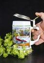 Free Beer Mug Royalty Free Stock Images - 21030889