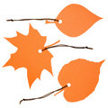 Free Three Orange Leaf-shaped Labels Stock Photography - 21033002