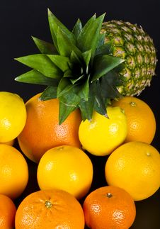 Free Citrus Fruits Royalty Free Stock Photography - 21030577
