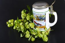 Free Beer Mug Royalty Free Stock Images - 21030779