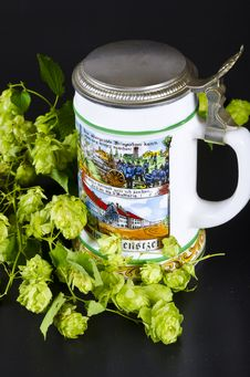 Free Beer Mug Stock Photography - 21030812