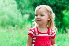 Beautiful Girl In The Meadow Royalty Free Stock Photo
