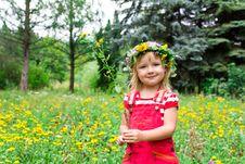 Free Beautiful Girl In The Meadow Stock Image - 21031671