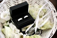 Free Wedding Rings Stock Image - 21032031