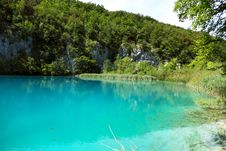 Crystal Clear Water In The Plitvice Lake Stock Photos