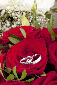 Free White Gold Wedding Rings Stock Photos - 21032313