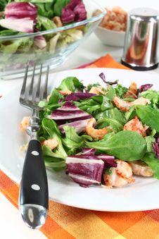 Free Mixed Salad Royalty Free Stock Photography - 21037187