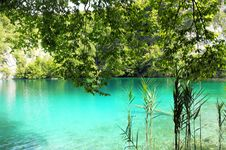 Free Crystal Clear Lake In Plitvice, Croatia Stock Photos - 21037593