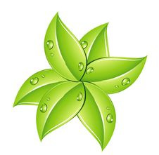 Nature Green Leafs Sign On The White Royalty Free Stock Image