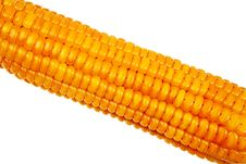 Free Corn Cob Closeup. Stock Image - 21038911