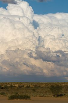 Free Kalahari Cumulus Clouds Stock Image - 21043441
