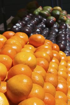 Oranges And Plums Royalty Free Stock Photo