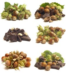 Free Wood Nut Royalty Free Stock Photo - 21045285
