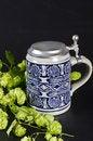 Free Beer Mug Stock Photo - 21050570