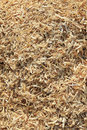 Free Wooden Sawdust Royalty Free Stock Photos - 21052868