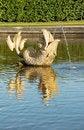 Free Fish Fountain In Peterhof, Russia Stock Photo - 21053760