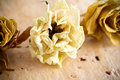 Free Dried Roses. Royalty Free Stock Images - 21056949