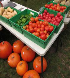 Free Farm Stand Table Royalty Free Stock Photography - 21050737