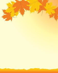 Free Autumn Background With Maple Leaves Royalty Free Stock Image - 21051126