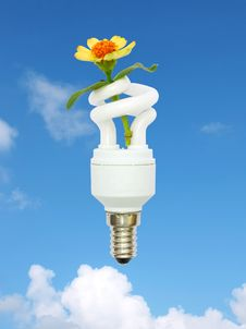 Free Energy Saving Light Bulb And Flower In The Sky Stock Image - 21051161