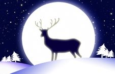 Deer And The Moon. Stock Photos