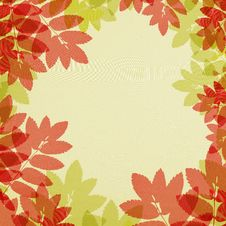 Free Autumn Leaves Frame Stock Image - 21052111