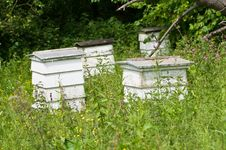 Free Beehives Stock Photography - 21052582