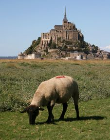 Free Mont-Saint-Michel, Normandy Royalty Free Stock Photo - 21053985
