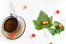 Free Herbal Tea Royalty Free Stock Photography - 21056487