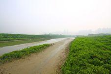 Free Wetland In Hong Kong Stock Photos - 21059033