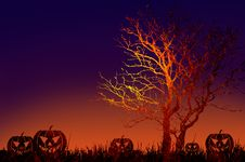 Free Grunge Textured Halloween Night Background Stock Photo - 21059320