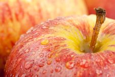 Free Water Droplet On Gala Apple Royalty Free Stock Photos - 21059778