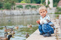 Free Cute Little Boy Feeding Ducks Royalty Free Stock Photo - 21060975