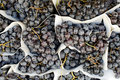 Free Red Grapes Stock Image - 21061671