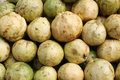 Free Guavas Royalty Free Stock Image - 21063406