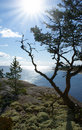 Free Ladoga Lake. Karelia Stock Photography - 21069932