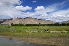 Free Tibet Landscape Stock Image - 21060801