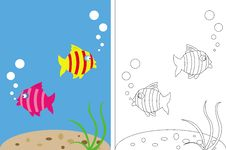 Free Coloring Page Book With Fish Underwater Stock Photography - 21061492