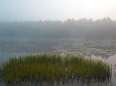 Silver Lake In The Early Morning Royalty Free Stock Images