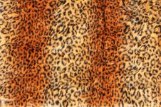 Free Leopard Fur Background Stock Images - 21063274