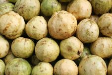 Free Guavas Royalty Free Stock Image - 21063406