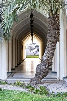 Free Arched Hallway Stock Photos - 21064273