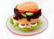 Free Hamburger Royalty Free Stock Photo - 21067505
