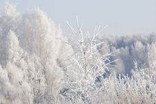 Free Winter Landscape Stock Photos - 21067563
