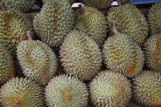 Free Durian Fruits Stock Photography - 21068022
