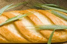 Free Fresh Bread Royalty Free Stock Photos - 21068028