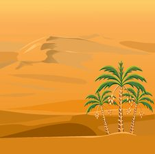 Free Vector Desert Landscape With The Palm Trees Royalty Free Stock Image - 21068756