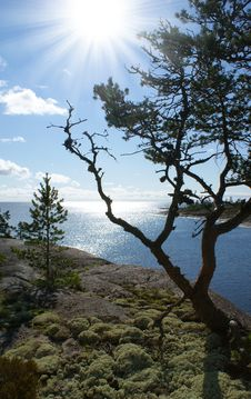 Free Ladoga Lake. Karelia Stock Photography - 21069932