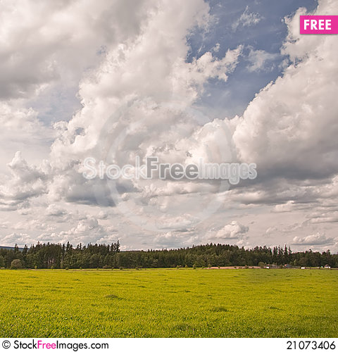 Free Green Meadow Royalty Free Stock Image - 21073406
